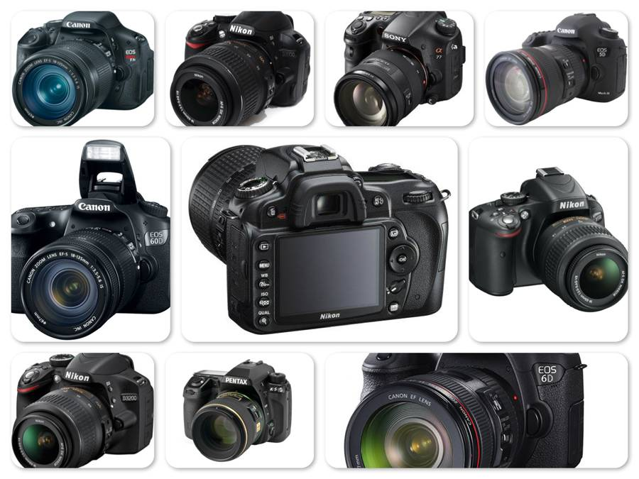 Reviews of Top 10 Digital SLR Cameras - Capturing Life With Lens