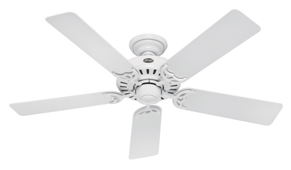 Review of Hunter 25517 Summer Breeze 52-Inch 5-Blade Ceiling Fan, White with White/Bleached Oak Blades