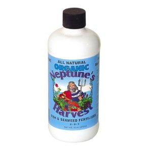 Review of Neptune's Harvest Organic Hydrolized Fish & Seaweed Fertilizer