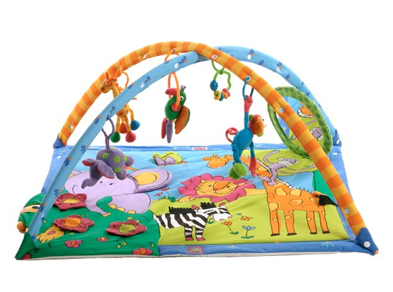 Review of Tiny Love Super Deluxe Lights and Music Gymini Activity Gym