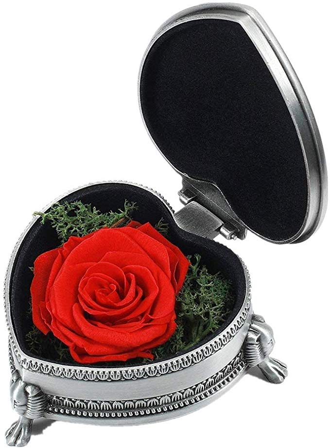 Review of Handmade Preserved Flower Rose, Gift for Valentine's Day